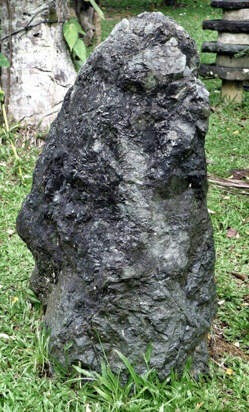 wpid-Leyte-Rafael-Farm-2_1.jpg